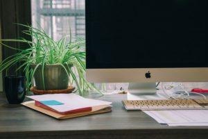 iMacと植物