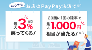 PayPay 3%