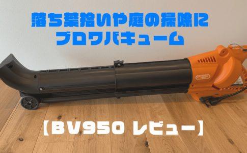 BV950アイキャッチ